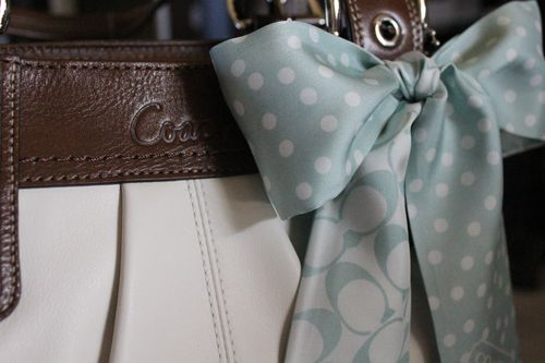Coach close-up