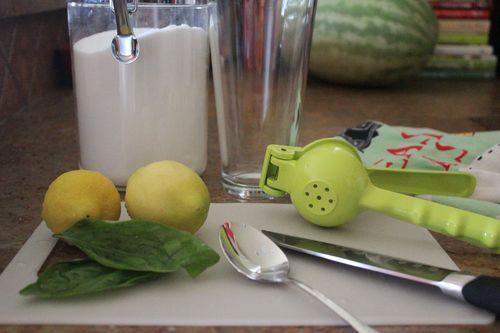 Lemonade basil 1