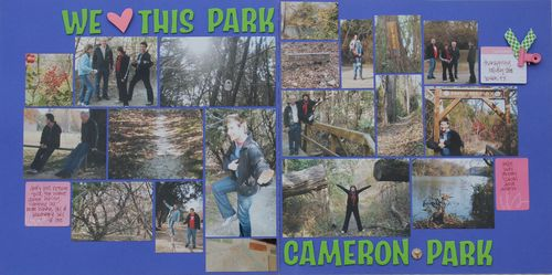 Cameron park full page