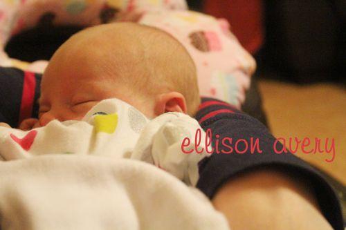 Ellison avery copy