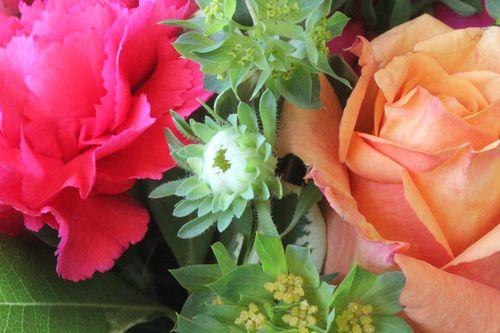 Jrbt flowers 2